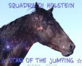 ☆ star of the jumping ☆
