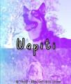 wapiti