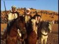 horses of morroco