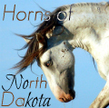 horns of north dakota๖ۣۜ