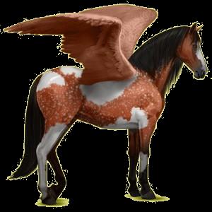 Ridpegasus Renrasig spansk häst Körsbärsbrun