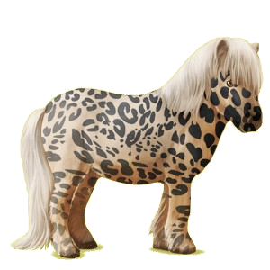 Pegasus-ponny Shetlandsponny Svart tobiano