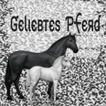 geliebtes pferd