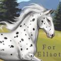 « for elliot »
