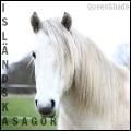 ✽ isländska sagor ✽