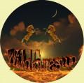 wildfiresun