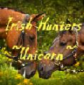 irish hunters