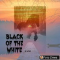 ×black of the white×