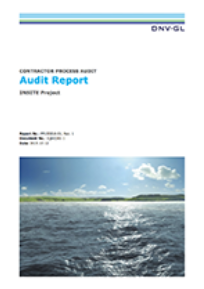 Dnv Gl Audit