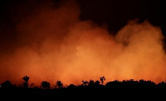 الأردن يعلن تضامنه في مواجهة حرائق الأمازون