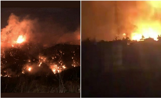 وفاة شخص واصابة 100 في 140 حريقا في عدد من الغابات الحرجية بلبنان