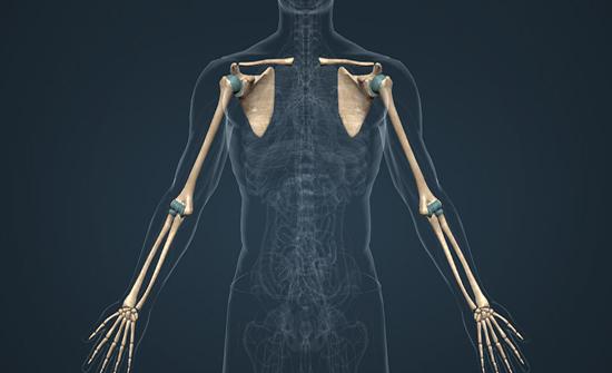 """تشكيل """"عظام"""" بطابعة ثلاثية الأبعاد من خلايا حية في درجة حرارة الغرفة .. فيديو"""