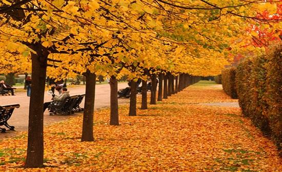 الأرصاد الجوية : موعد الاعتدال الخريفي الأربعاء المقبل