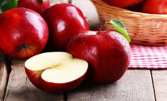 تفاح الشوبك يواجه خطر الاستمرار
