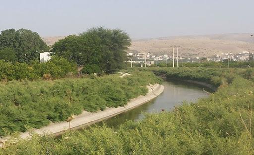 الشونة الشمالية : انتشال شخصين سقطت مركبتهما في قناة الملك عبدالله