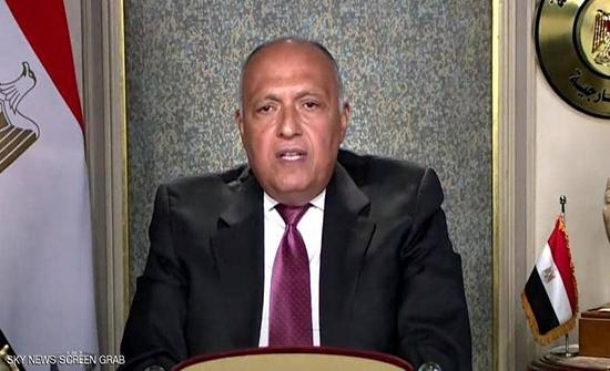 شكري أمام مجلس الأمن: لن نسمح بأي تهديد لأمن مصر المائي