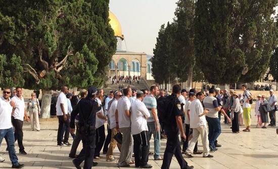 مستوطنون متطرفون يقتحمون الاقصى بحراسة شرطة الاحتلال