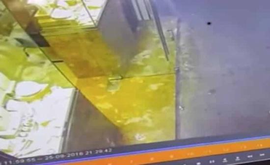 بالفيديو: السبب فأر.. حقيقة السطو المسلح على محل ذهب