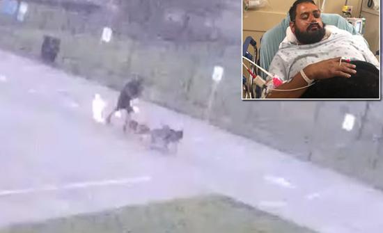 فيديو : صاعقة تضرب رجلًا وتُسقطه أرضًا في امريكا