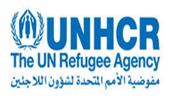 مفوضية اللاجئين: مخاطر شديدة يتعرض لها المدنيون بمأرب اليمنية نتيجة تصاعد حدة القتال