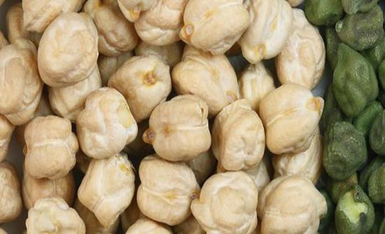 النزاهة ترصد ادخال 320 طنا من الحمص المتعفن إلى الأسواق الأردنية
