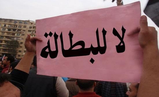الناصر: الديوان لا يتحمل مسؤولية البطالة منفرداً