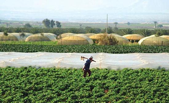 الاقراض الزراعي يمنح مليون دينار لمزارعي عجلون
