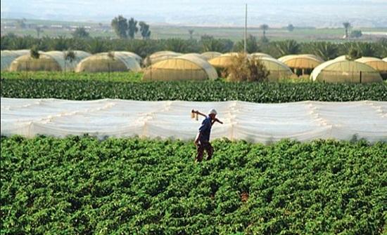 شركات ومؤسسات إقراضیة تحجم عن تمویل مزارعین بسبب مدیونیتھم