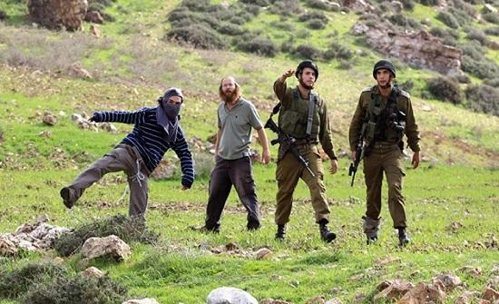 مستوطنون يهاجمون منازل الفلسطينيين بنابلس