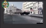 فيديو  : ضبط سائق قاد مركبته بصورة طائشة ومتهورة في معان