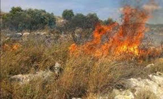 إخماد حريق أعشاب جافة و محاصيل زراعية في محافظة اربد