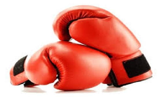 منتخب الملاكمة يختتم معسكره بأميركا ويستعد للمغادرة إلى روسيا