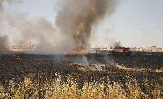 الدفاع المدني يخمد حريق أعشاب جافة في محافظة إربد