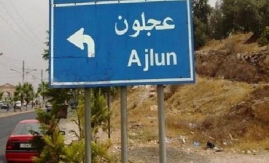 لجنة محافظة عجلون تتابع تطبيق اجراءات السلامة العامة