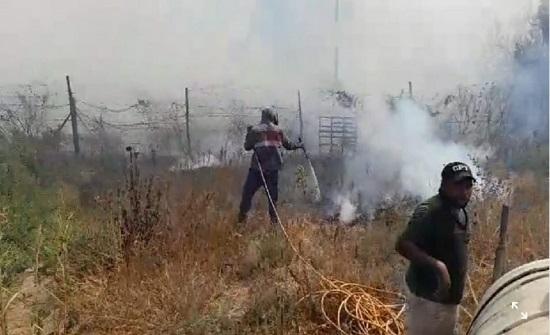 اخماد حريق امتد للأراضي الأردنية بالأغوار ولجنة لحصر أضراره