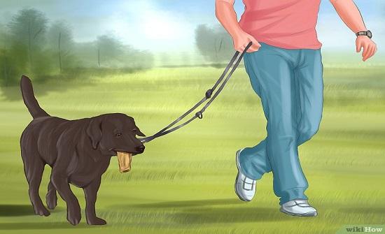 مواطنون: الحكومة أتاحت لنا فرصة مثالية لممارسة رياضة المشي