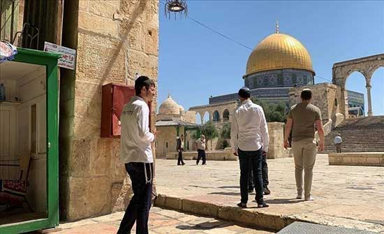 القدس.. إصابة فلسطيني في اعتداء مستوطنين إسرائيليين