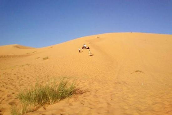 الامن:  تمشيط منطقة صحراوية في البادية الجنوبية بحثاً عن حدث مفقود