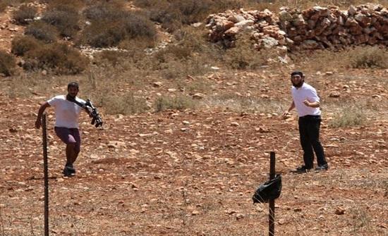 مستوطنون متطرفون يهاجمون المزارعين الفلسطينيين جنوب الخليل