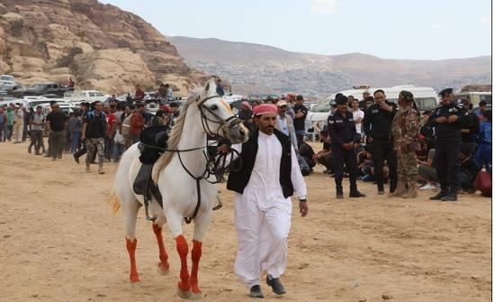 انطلاق فعاليات مهرجان البترا الاول للخيول في البترا
