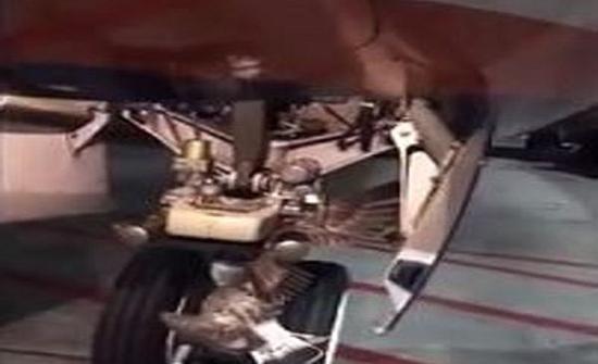 شاهد : طائر يعلق في مؤخرة طائرة كاد يسبب كارثة في موسكو