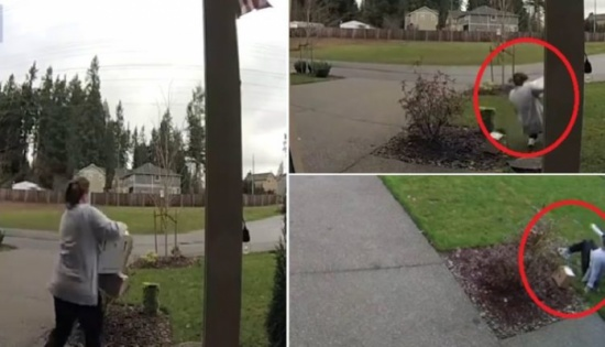 فيديو مروع.. أمريكية هبطت من سيارتها لتسرق فكان العقاب الإلهي