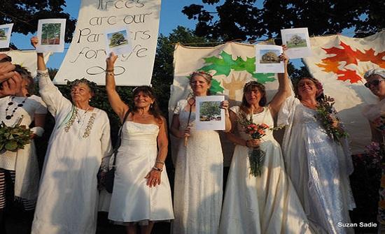 عشرات النساء في بريطانيا يتزوجن الأشجار - صور