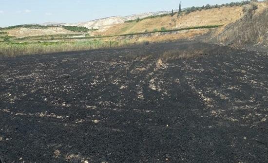 لجنة حصر أضرار حريق الأغوار تباشر أعمالها
