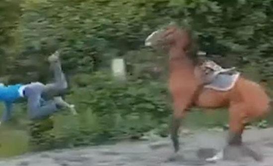 سقوط مروع لشاب أثناء تدريبه على حصان (فيديو)