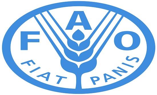 """""""فاو"""": انخفاض أسعار الغذاء العالمية في آب"""