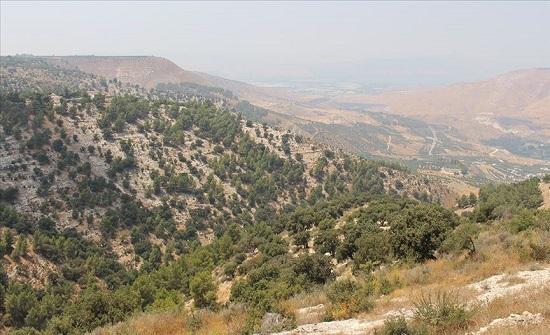 اربد: حركة سياحية نشطة بمحمية اليرموك الطبيعية