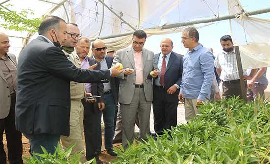 وزير الزراعة يتفقد مشروعين رياديين في جرش وعين الباشا