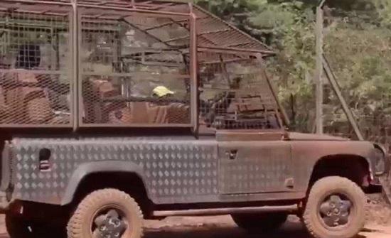 السنغال : حديقة حيوانات تحبس البشر وتترك الحيوانات طليقة