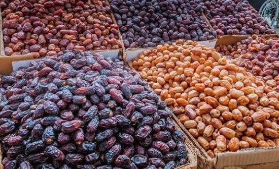 التمور الأردنية : مزارع التمور تعمل بمستوى عال من التقنية والاحتراف